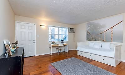 Living Room, 256 Lyndhurst Pl, 0