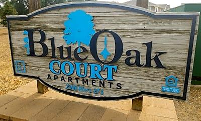 Blue Oak Court, 1