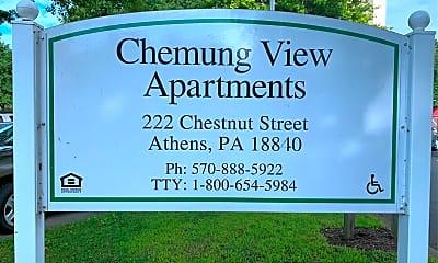 Chemung View, 1