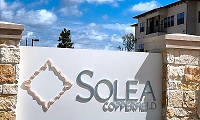 Solea Copperfield, 1