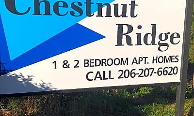 Chestnut Ridge, 1