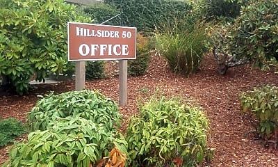 Hillsider 50, 2