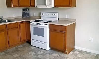 Kitchen, 245 Elizabeth St 7, 1