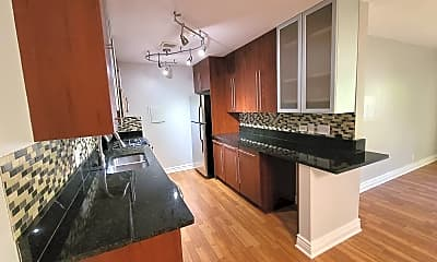 Kitchen, 508 N Cass Ave, 1