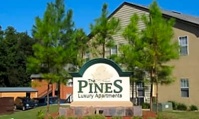 The Pines at Glen Pointe, 0