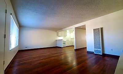 Living Room, 1106 E Washington Ave, 1
