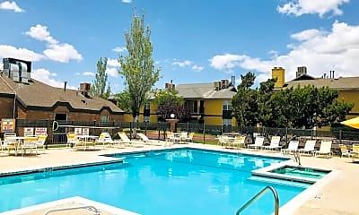 Pool, The Bartlett, 2