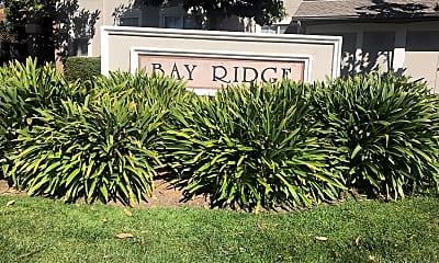 Bay Ridge, 1