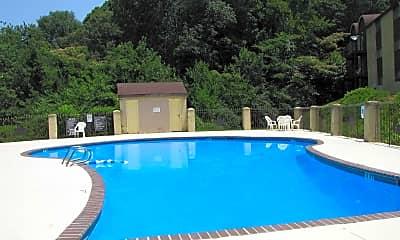 Pool, Brookstone at Brookhaven, 0
