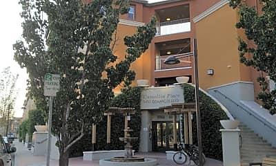 Camellia Place, 0