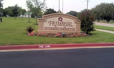 Shawnee Primrose, 1