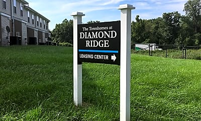 The Townhomes At Diamond Ridge, 1