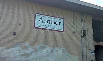 Amber, 1