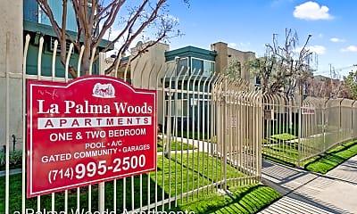 Pool, 2520 W La Palma Ave, 2