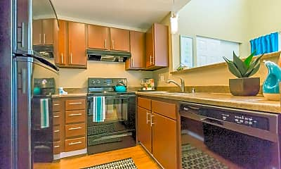 Kitchen, Central Flats, 2