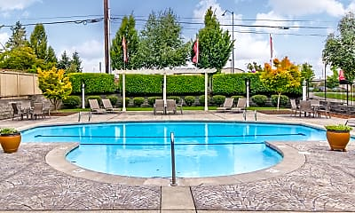 Pool, Willow Springs Apartment Homes, 1