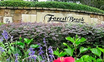 Forest Brook, 2