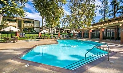Pool, Alicia Village, 1