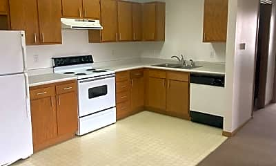 Kitchen, 1105 S Prospect Dr, 1
