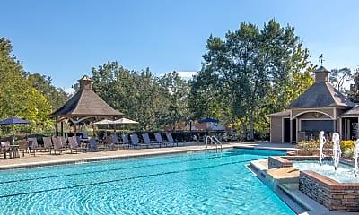 Pool, The Paddock Club Tallahassee, 1