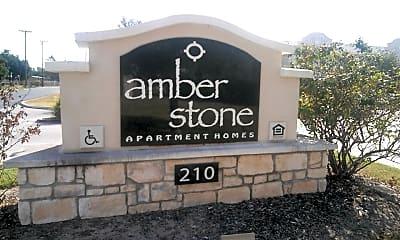Amber Stone, 1