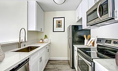 Kitchen, Blue North, 1