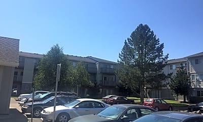 Lodge Pine, 0