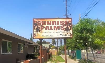Sunrise Palms, 1
