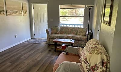 Living Room, 1165 Mockingbird Ln, 1