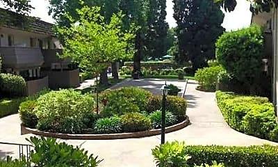 Landscaping, Hacienda, 0