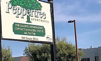 PEPPER TREE, 1