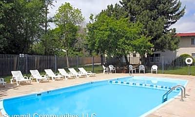 Pool, 950 W 103rd Pl, 1