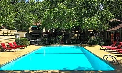 Pool, Shasta Terrace, 2