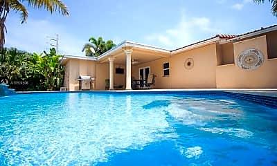 Pool, 433 SE 3rd Terrace, 0
