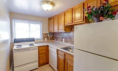 Kitchen, Silver Lake, 1