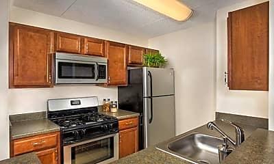 Kitchen, Mason at Van Dorn, 0