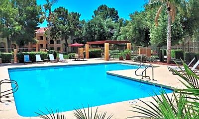 Pool, Olive Tree, 1