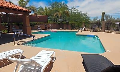 Pool, 301 E Shadow Bluff Pl, 1