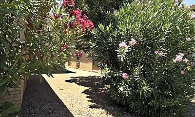 Landscaping, Trevino Place, 2
