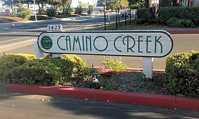 Camino Creek, 1