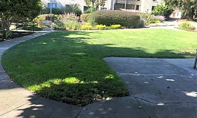 Redwood Gardens, 2