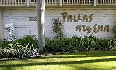 Pallas Athena, 0