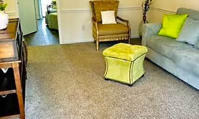 Living Room, 472 Lindsay St, 1