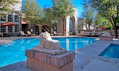 Pool, 1500 E Pusch Wilderness Dr 15204, 0