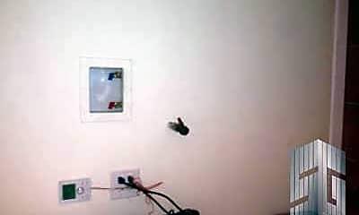 Bedroom, 2402 Gerritsen Ave, 2