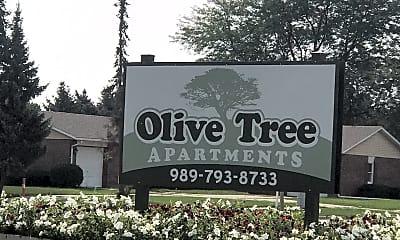 Olive Tree, 1