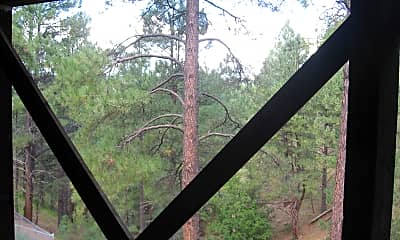 Patio / Deck, 2791 Burro Springs Ovi, 2