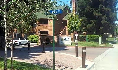 Sierra Crest, 1