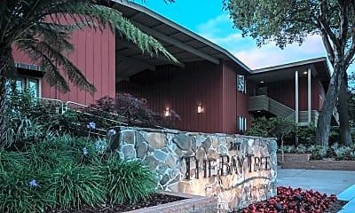 Bay Tree, 2