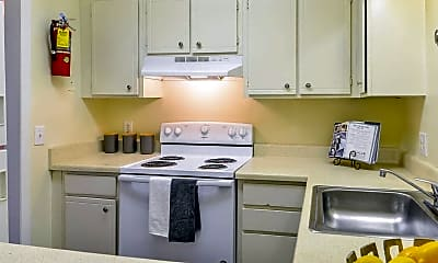 Kitchen, Hunters Point, 1